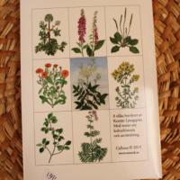 Brevkort läkeväxter